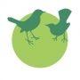 Мрежи срещу птици